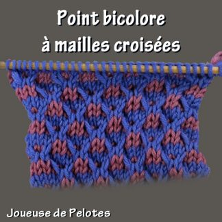 Joli point de Tricot - Point bicolore