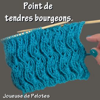 Joli point de Tricot - Tendres bourgeons